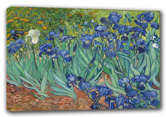 Van Gogh, Vincent: Irises, 1889. Fine Art Canvas. Sizes: A3/A2/A1 (0090)